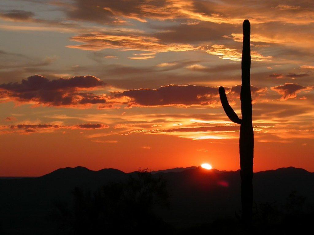 arizona, landscape, scenic